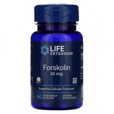 Колеус форсколии 100 мг (10% форсколина)