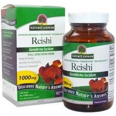 Рейши 500 мг