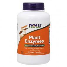 Энзимы растительные