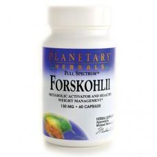 Колеус форсколии 130 мг (20% форсколина)